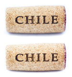 Chile Wine Corks Stock Images