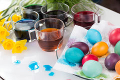 Staining of Easter eggs Royalty Free Stock Photos