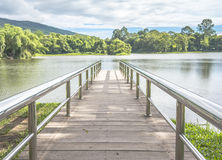 Stainless Steel Bridge Or Pier At Lake Constance See The Mount Royalty Free Stock Image
