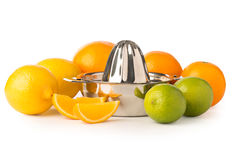 Stainless Steel Citrus Juicer Surrounded by Citrus Fruits Royalty Free Stock Images