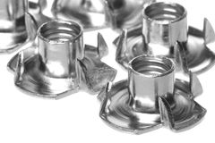 Stainless Steel Tee Nuts Isolated Stock Photo