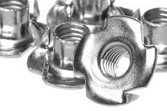 Stainless Steel Tee Nuts Isolated Stock Photography