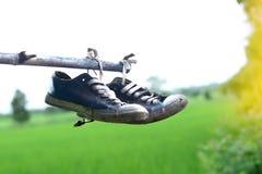 stainly los zapatos viejos cuelgan en la barra de bambú con backgro verde del campo Fotografía de archivo libre de regalías
