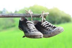 stainly los zapatos viejos cuelgan en la barra de bambú con el campo verde Imagenes de archivo
