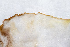 Stains on white paper. Stains on paper background texture stock image