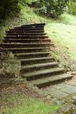 The stair. The old srairs in park Stock Photography