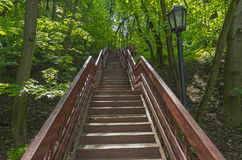Stair climbing out of the ravine. Wooden stair climbing out of the Golosow ravine in Kolomenskoye park in Moscow. Russia Stock Photos
