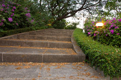 Stair in Park Landscaped Stock Photo