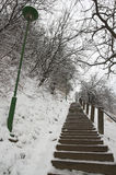 Stair on park. Winter in Ilok , snow on stairs Stock Images