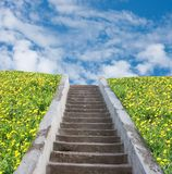 Stair to blue sky with clouds Stock Image
