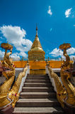 Stair to the pagoda Royalty Free Stock Images