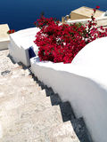 Stair to the sea, Santorini Stock Images