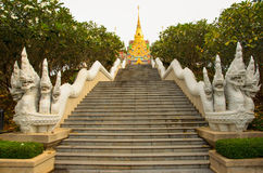 Stair to Temple. Animal in fairytell 0n stair to temple Royalty Free Stock Image