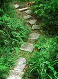 Stair to tropical mountain Stock Photos