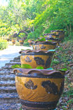 Stair with the vases of lotus flowers Stock Photos