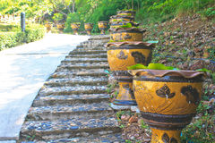 Stair with the vases of lotus flowers Stock Images