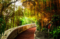 Stair way in park with gold light. Bangkok THailand Stock Image