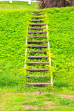 staircase Fotos de Stock Royalty Free