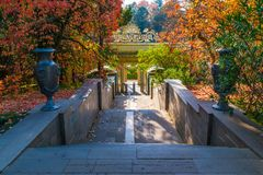 Staircase of Arboretum, Sochi, Russia. Staircase with vases between varicolored trees in Arboretum in sunny autumn day, Sochi, Russia Royalty Free Stock Photos