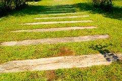 Staircase artificial grass with wooden Royalty Free Stock Photos