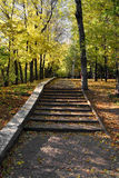 Staircase in autumn park Stock Photo