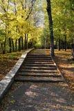 Staircase in autumn park Stock Photo