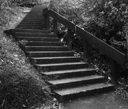 Staircase. Concrete Staircase black and white Royalty Free Stock Image