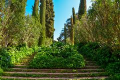Staircase covered with ivy and sculpture. In the Santa Clotilde Gardens in Lloret de Mar stock photos