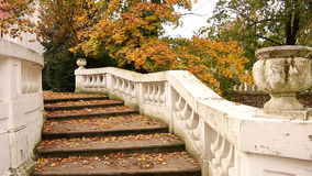 Staircase with fallen leaves stock footage