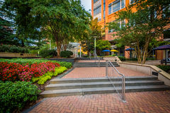 Staircase and gardens at Johnson & Wales University, in Charlott Royalty Free Stock Image