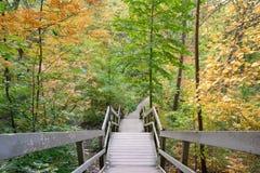 Staircase at Glen Stewart Ravine, Toronto, Ontario
