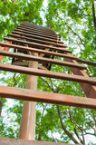 Staircase. Go to tree home with Staircase Stock Images