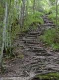 Staircase. Hiking through the Bavarian Alps of Southern Germany Stock Photography