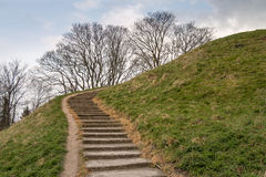 Staircase on a Hill. With Bright Sky and Tree Royalty Free Stock Images