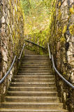 Staircase in moss. Old stone staircase in Pacific rainforest Stock Photos