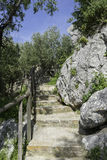Staircase in nature Stock Photo