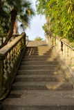 Staircase in a park Stock Image