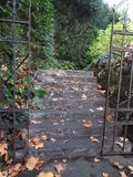 The staircase of the property in autumn is dangerous with the dead leaves. A staircase with a wrought iron gate covered with leaves mmortes in autumn Stock Image