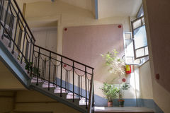 Staircase and stairs to the entrance to the apartment and pot pl Royalty Free Stock Photo