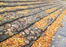 A staircase of stone with many autumn leaves Stock Photography