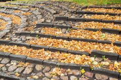 A staircase of stone with many autumn leaves Stock Image