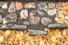 A staircase of stone with many autumn leaves Royalty Free Stock Photos