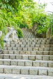 Staircase of stones for nature on background. Royalty Free Stock Photos