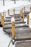 Staircase swept snow Stock Images