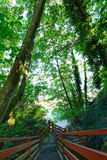 Staircase to the beach. Federal Way, WA Royalty Free Stock Image
