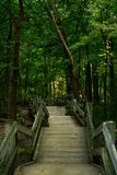Staircase to the trails. Stock Photos