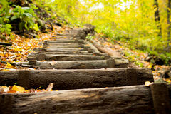 Staircase up the hill. This is a staircase leads up the hill in an autumn forest Royalty Free Stock Photo