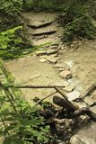 Staircase in the wilderness of nature next to the reservoir. royalty free stock photos