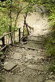 Staircase in the wilderness of nature next to the reservoir. royalty free stock photo