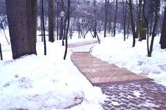 Staircase. In winter park of Tsaritsino Royalty Free Stock Photo